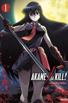 Akame ga Kill! ภาค 1